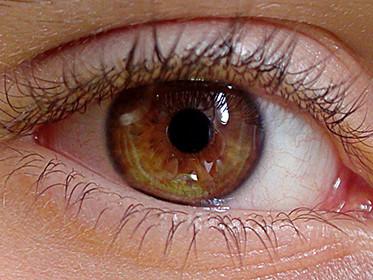 eye-419646_1280_373x373
